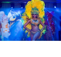 Tropicalia Latin Brazilian Show Band