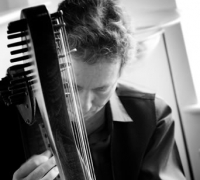 Chris Knowles - Celtic harpist